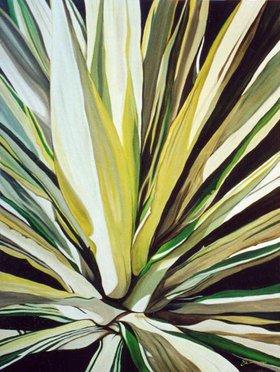 Hawaii Agave by Shanny Lott
