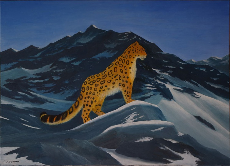 snow leopard in summer - Image 0