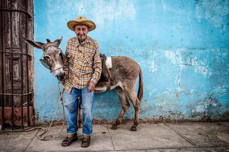 Donkey!!!