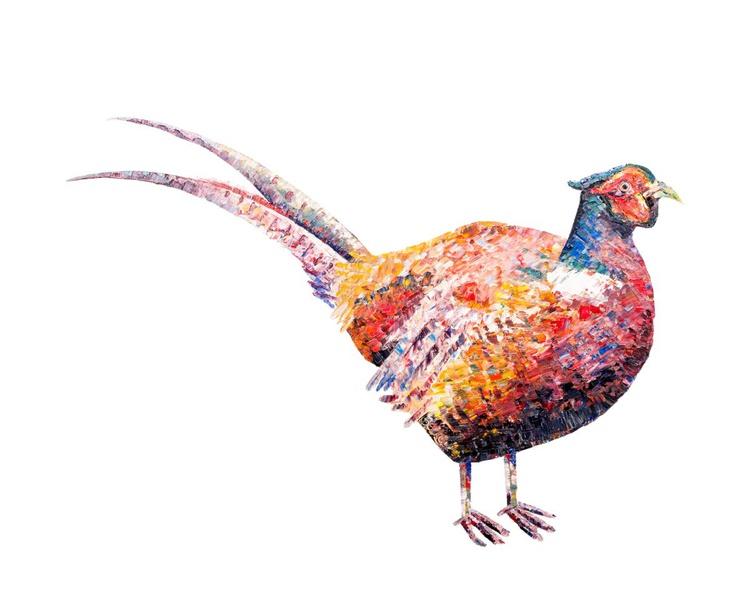 Pheasant - Image 0