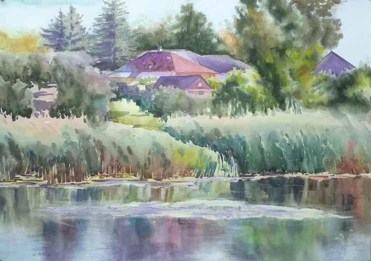 River bank -