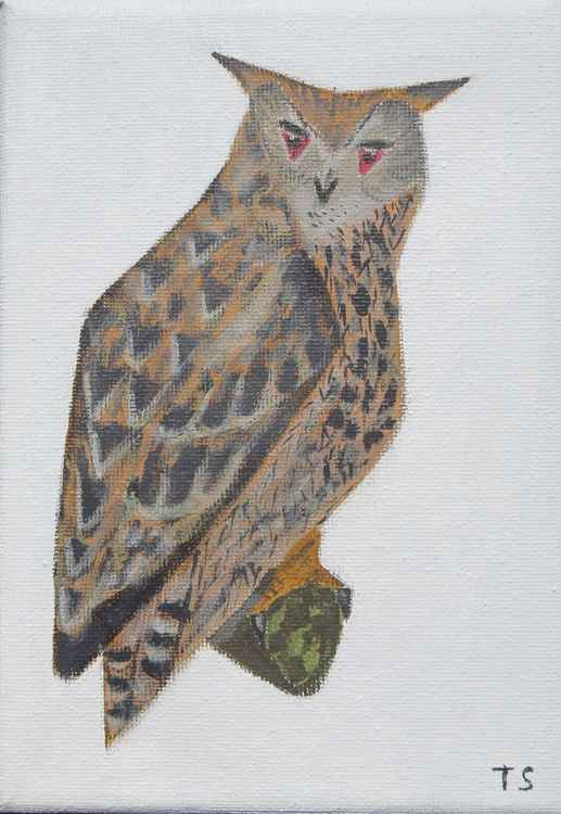 Eagle owl -