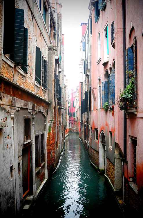 Venice Pink Canal -
