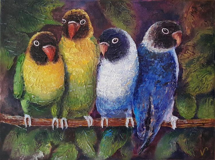 Parrots - Image 0