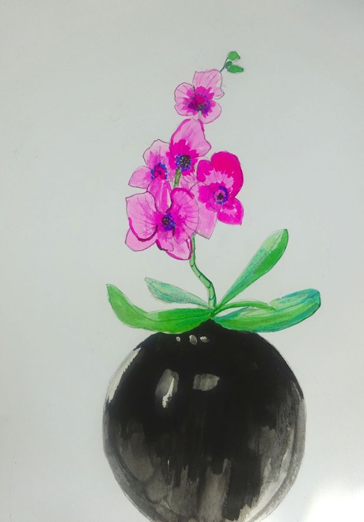 Pink Orchid - Image 0