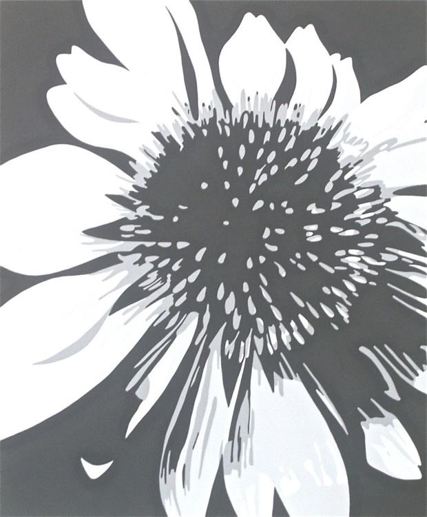 Fiori d'ombra - Image 0