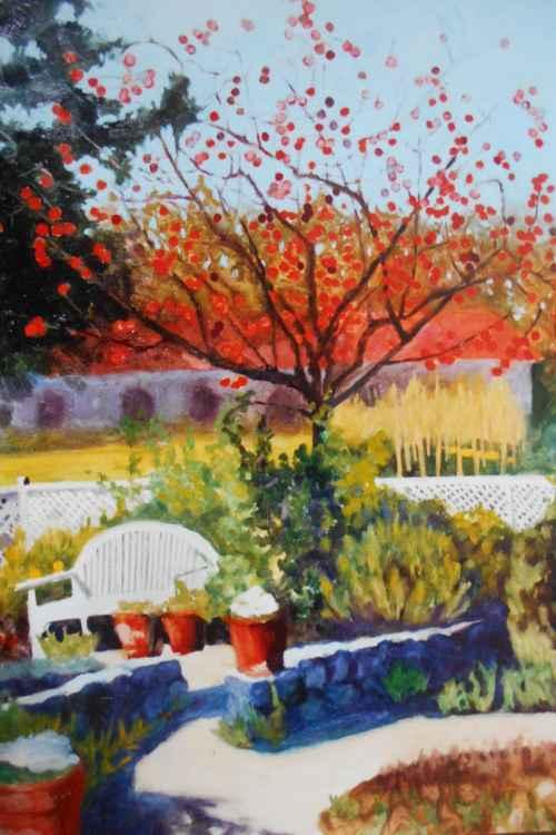 Napa Persimmon Tree -