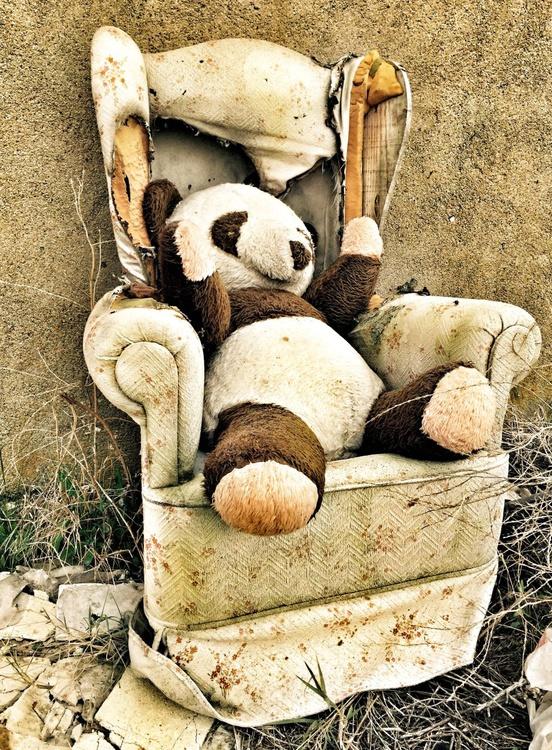 Panda bear - Image 0