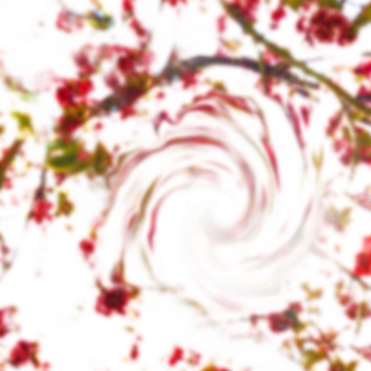 Blush (Phosphene Flowers Series) - Image 0