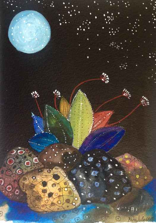 Night blooms -