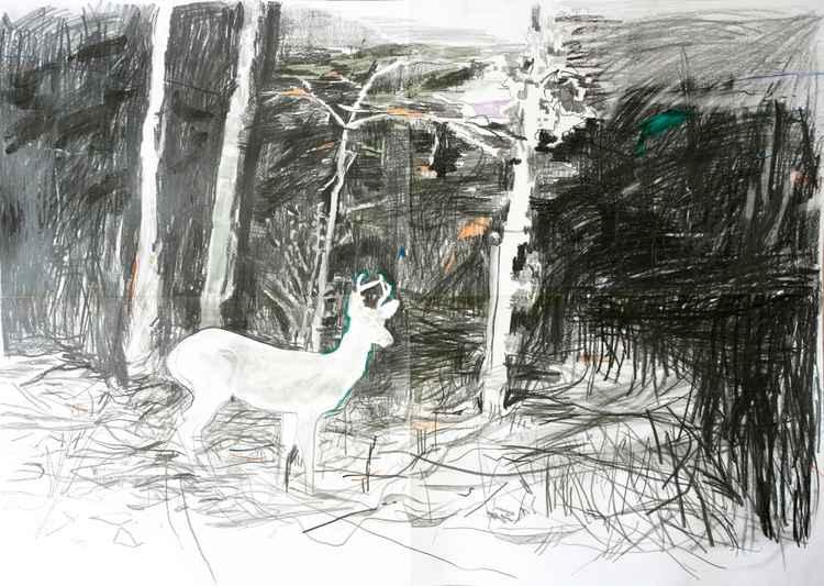 Deer1 -