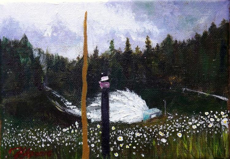 Timothy Lake Dam - Image 0
