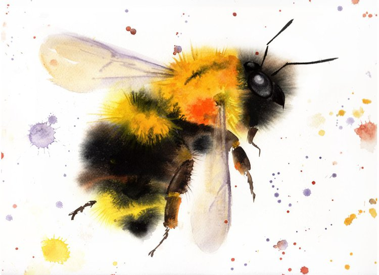 Bumblebee In Flight 1