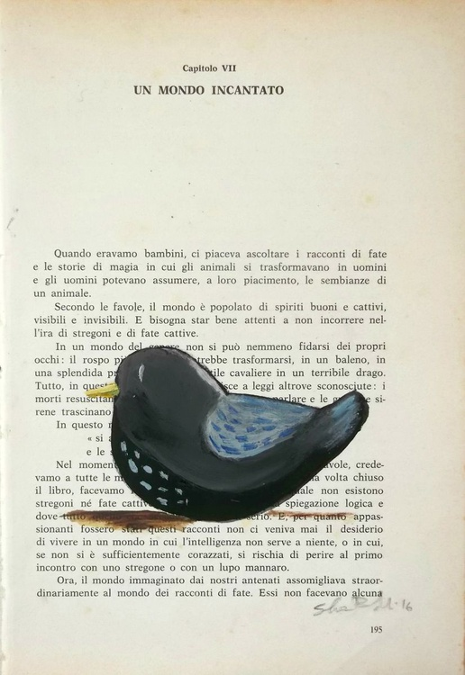 The blackbird on page - Image 0
