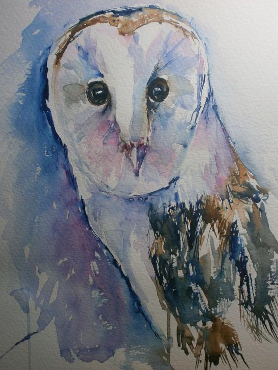 colourful owl - Image 0
