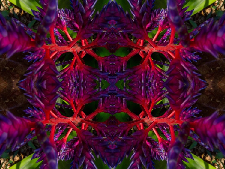 Sphota - Image 0