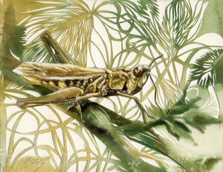 grasshopper watercolor with paper cut - Image 0