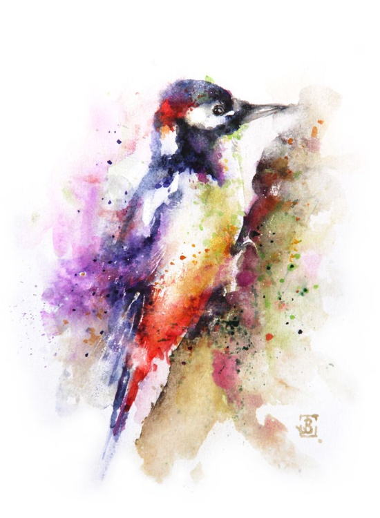 Woodpecker - Image 0