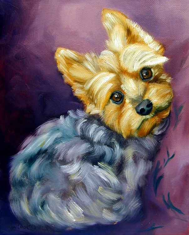 Yorkshire Terrier Original Oil painting 8x10 canvas Cozy -