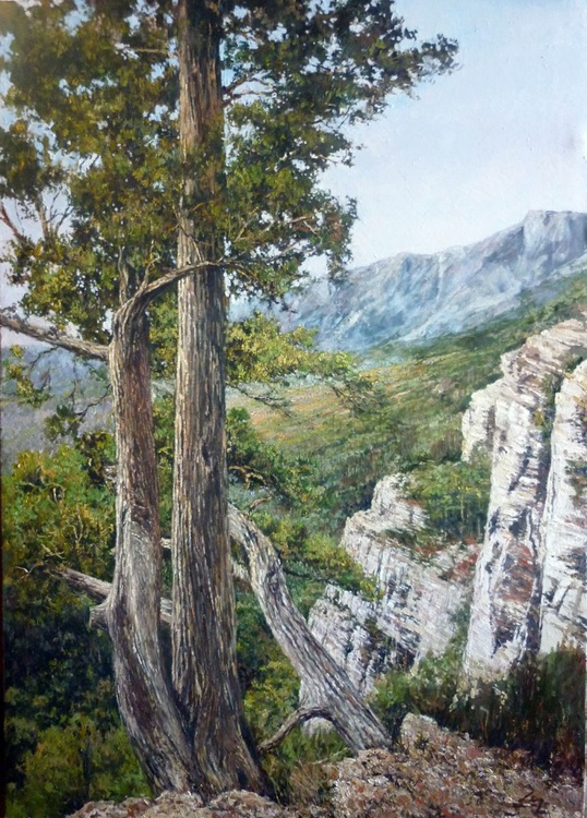 In the Mountains - Image 0
