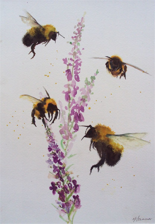 Four Bees  & Veronica - Image 0