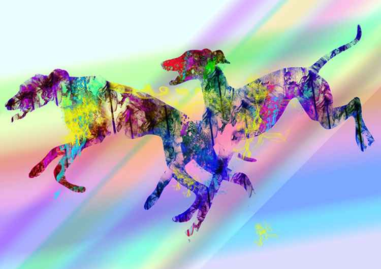 Greyhounds running II/ Photography & Digital painting -