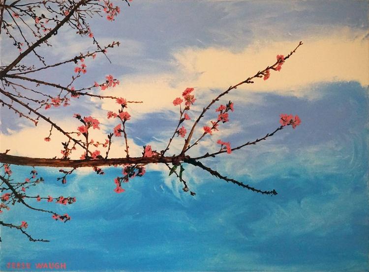 Sakura Cherry Blossoms Ichi - Image 0
