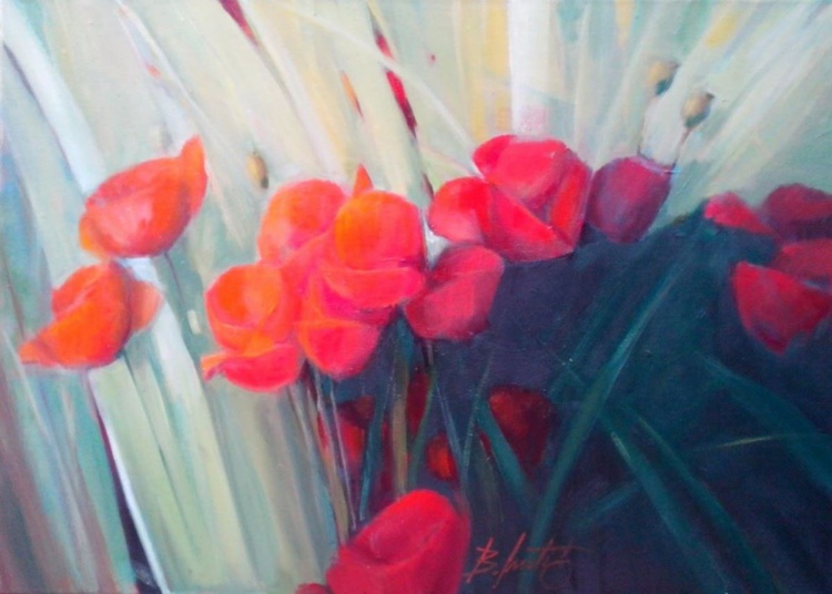 fire poppies - Image 0