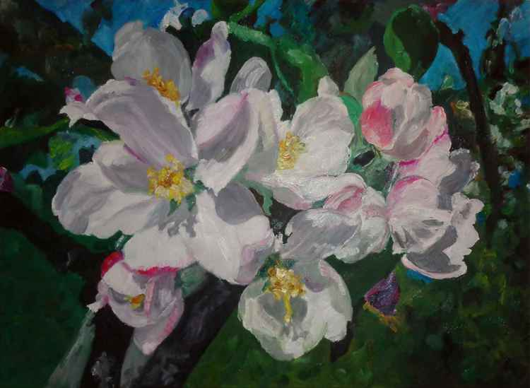 APPLE FLOWERS -
