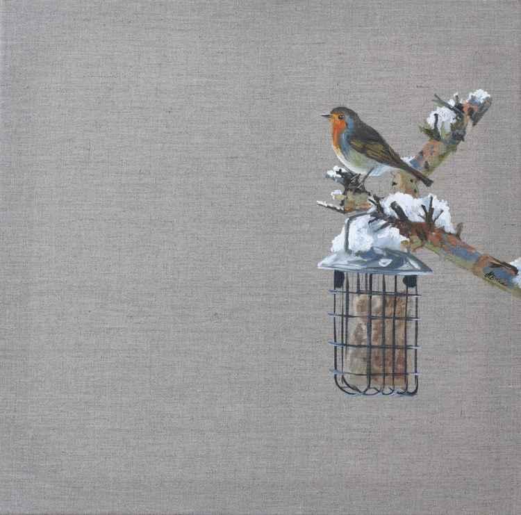Perched Winter Robin