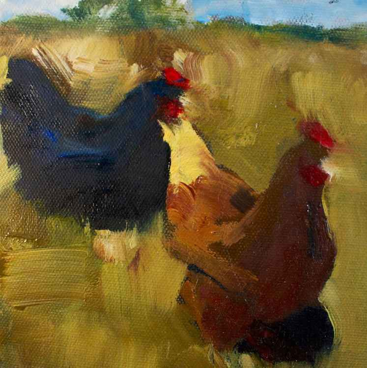 Chickens -