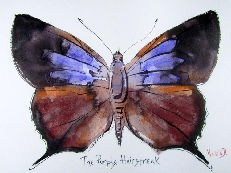 The Purple Hairstreak (Thecla Quercus) - Image 0