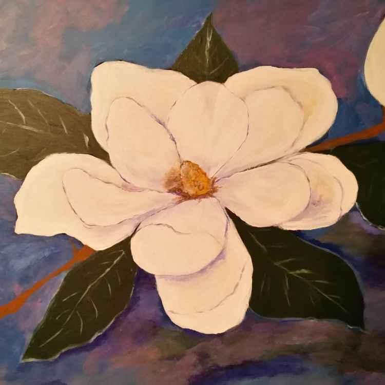 Magnolia Dreaming -