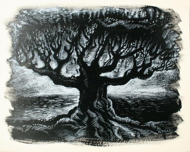 Oak tree. - Image 0