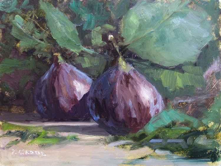 2 Figs -