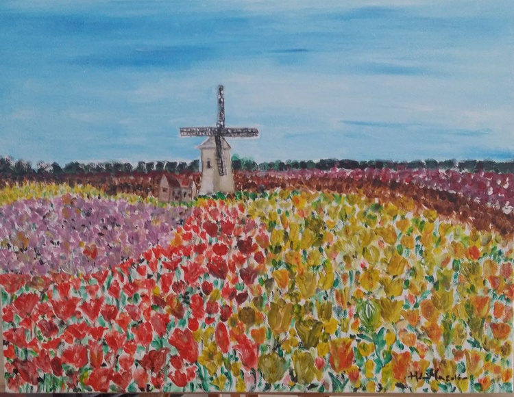 Windmill with beautiful Tulip field in Holland - Image 0