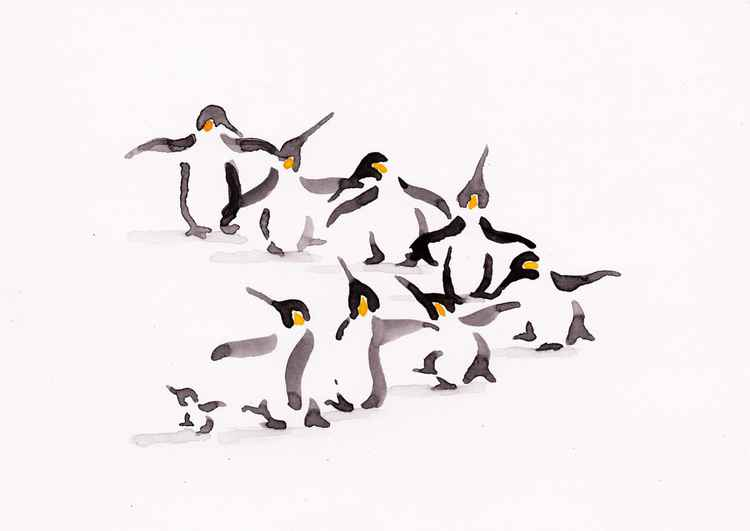 Eight penguins and a chick 2115A