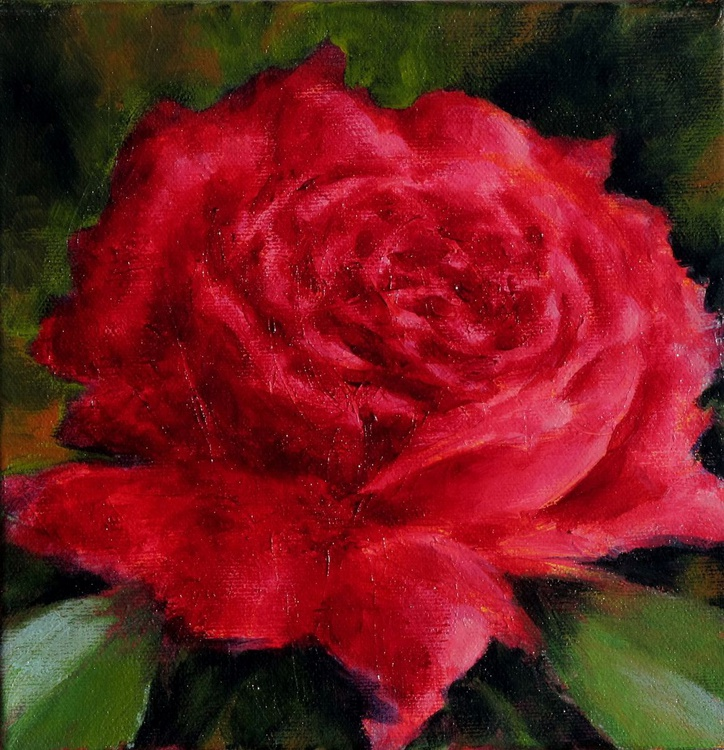 The red rose - Image 0