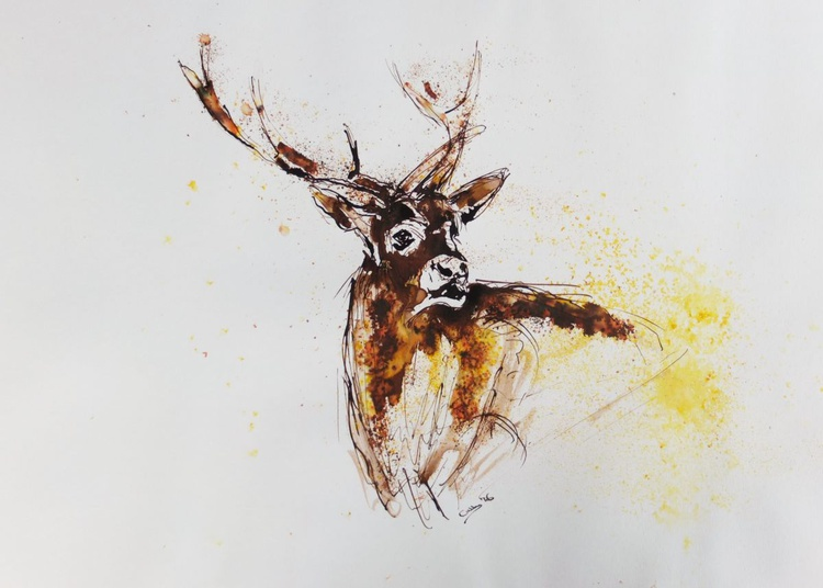 Stag -Demonstration sketch for YouTube - Image 0