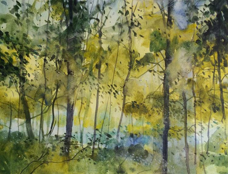 Sussurri nel bosco - Image 0