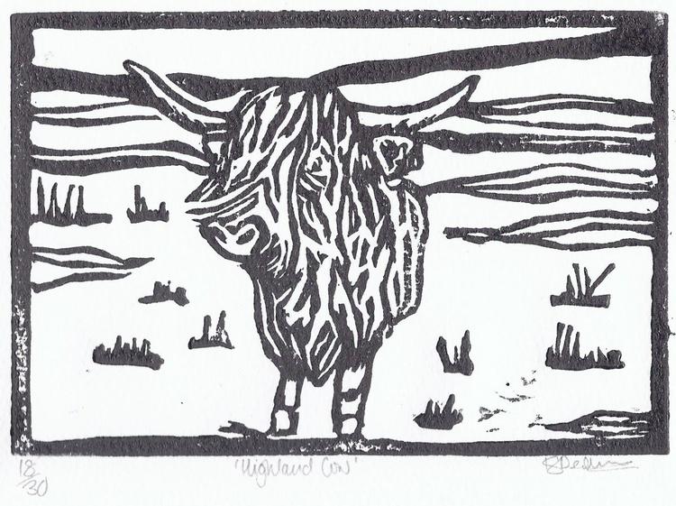 Highland Coo - Image 0