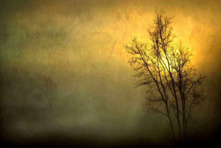 Light in the Darkness - Canvas 75 x 50 cm - Image 0