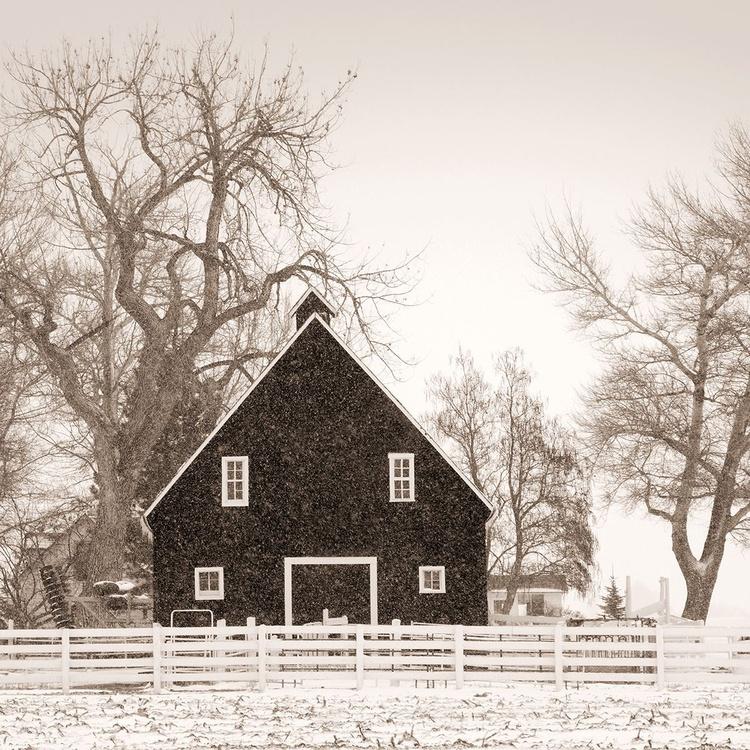 Black Barn - Image 0