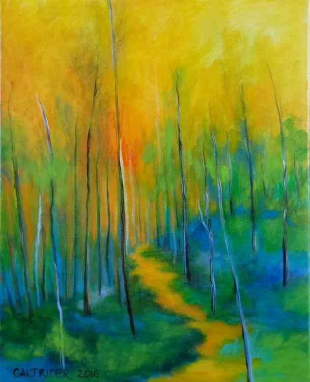 The Chosen Path -