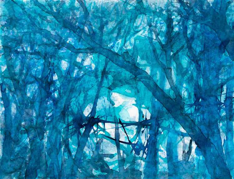 In the woodland : The witches trees - medium size watercolor on paper 47X62 cm -