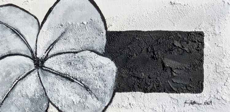 Flower on Concrete 1