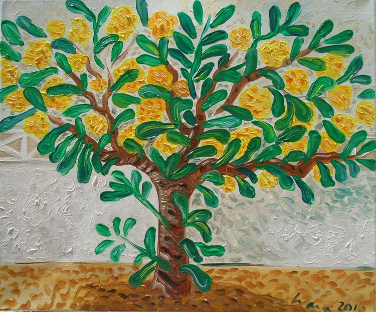 Pittosporum in bloom - Image 0