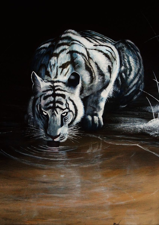 'The White Tiger' - Image 0