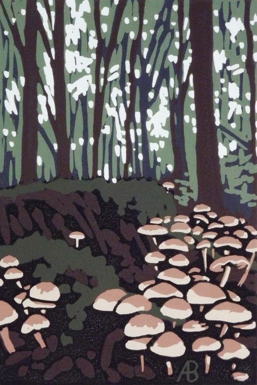 Stoke Wood Mushrooms - Image 0