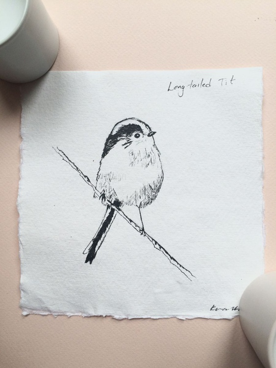 Long-tailed Tit Ink Sketch - Image 0
